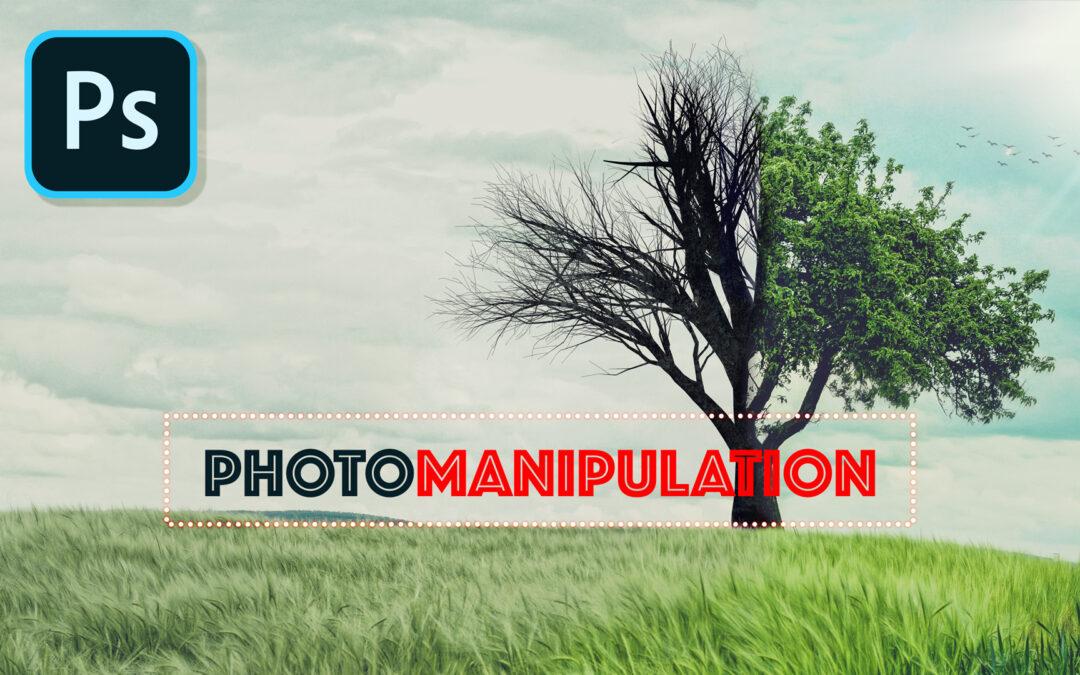 🎓Tutoriel de photomanipulation photoshop : «un arbre, deux saisons»